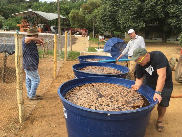 příprava fermentací